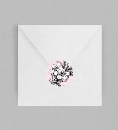 Macaron enveloppe Birds