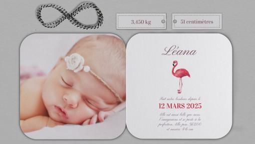 Faire part naissance Flamingo