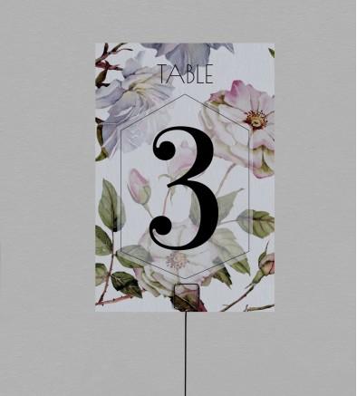 Numéro de table Botanique Appoline