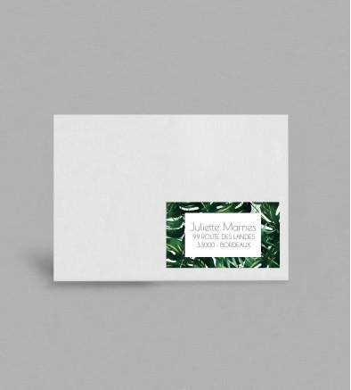 Etiquette enveloppe exotique Jungle