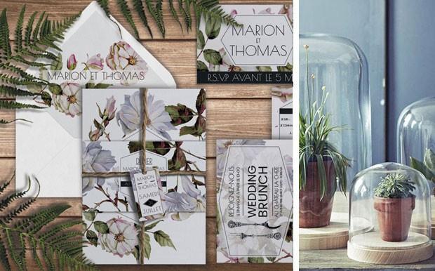 Collection Botanique Appoline