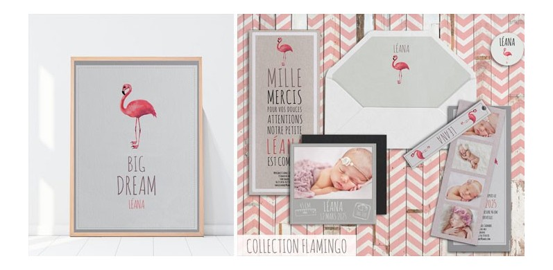 Collection Flamingo