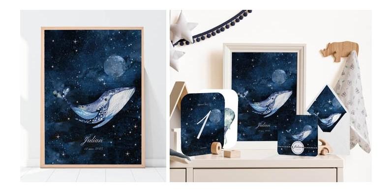 Collection Baleine