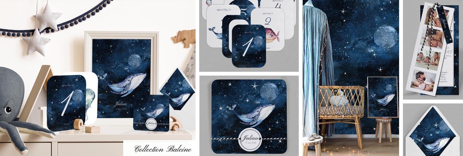 Faire part naissance Collection Baleine