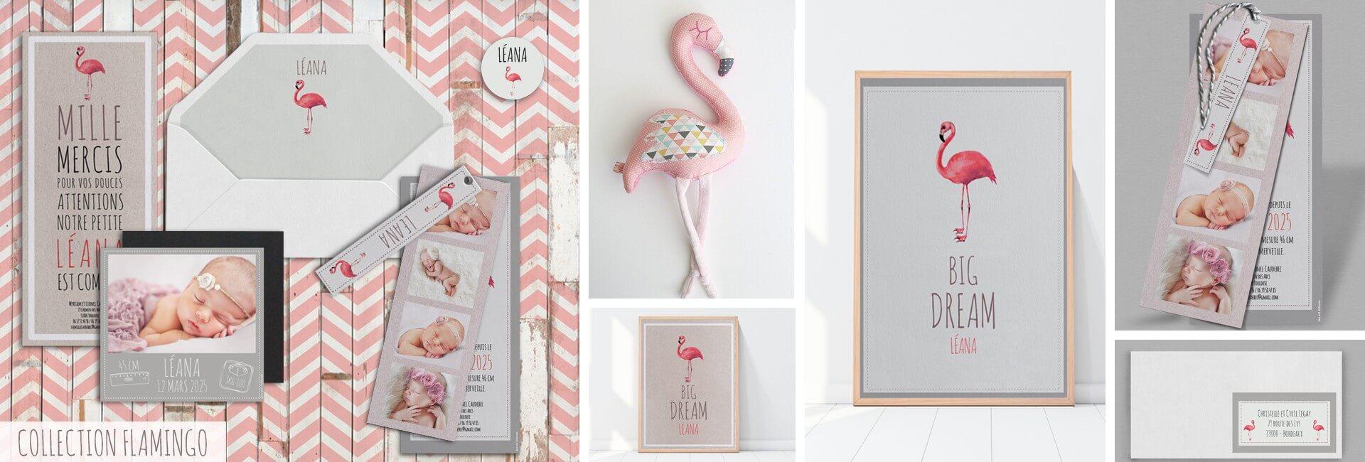 Collection Naissance Flamingo